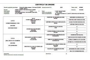 Program pentru registre genealogice